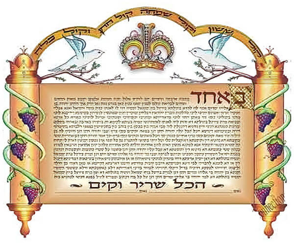 Ketubah by Simcha Back,Sefer Torah